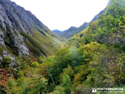 Hayedos Parque Natural de Redes;la barranca la panera el espinar findes